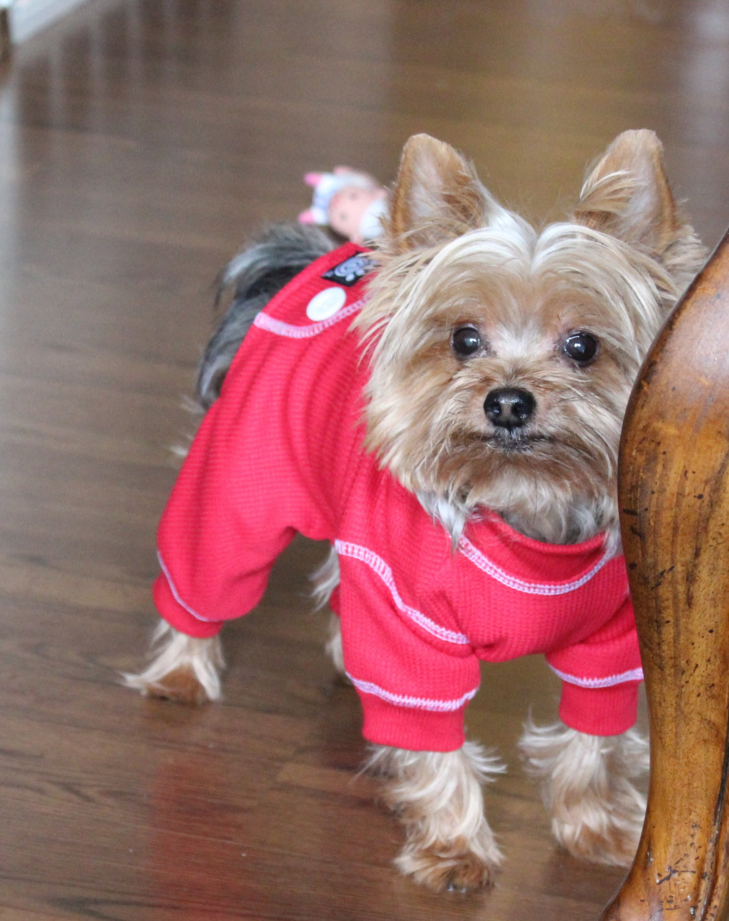 597061f36164 Cozy Thermal Dog Pajamas in Red – Dasch the Dog - Good Dog Mania