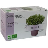 Organic Aromatic Thyme Infusion 20 Sachets x 1.5 g - Green Food Direct
