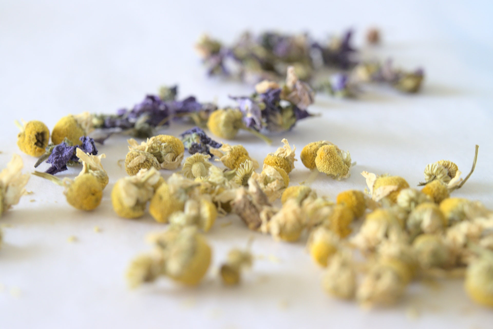 NEW Blends | Chamomile or Violet Wholesale