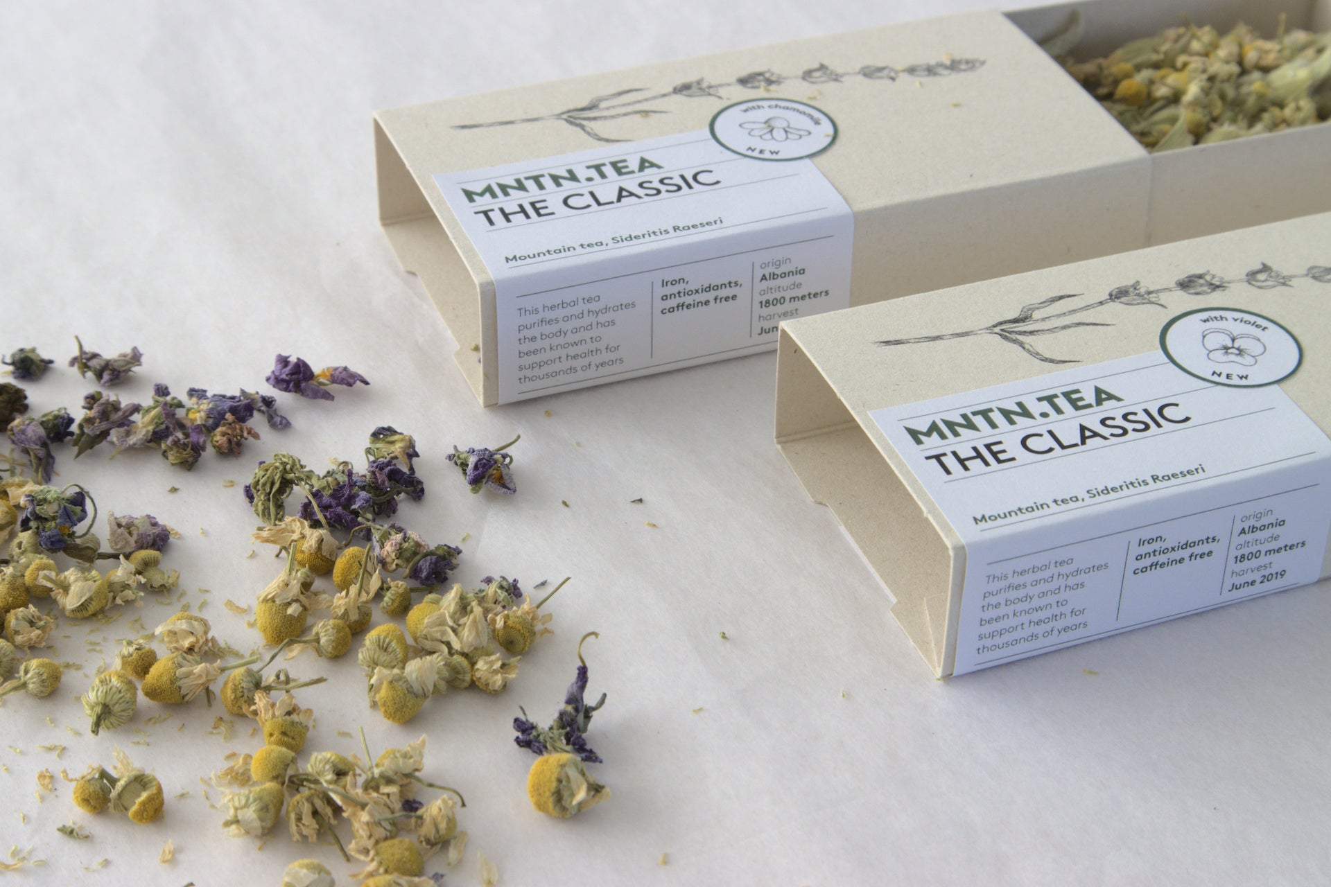 NEW Blends | Mini Chamomile or Violet