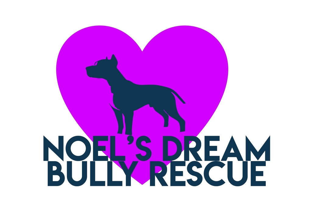 Massachusetts - Noel's Dream Bully Rescue