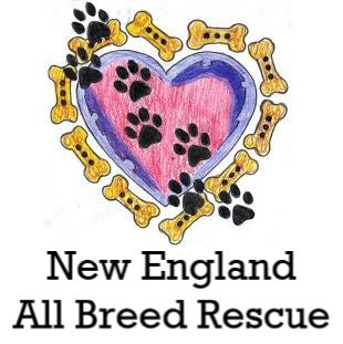 Massachusetts, New Hampshire - All Breed Rescue