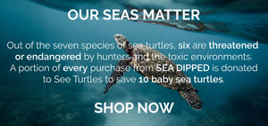sea dipped gives back