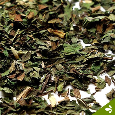 Peppermint Leaves Tea (Pure) - The Tea Brokers