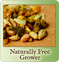 Scratch & Peck Feeds Naturally-Free Organic ~ Stage 2 Grower