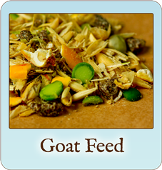 Scratch & Peck Feeds Organic Goat Feed