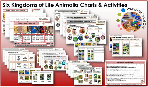 Six Kingdoms Animalia Charts, Materials and Labels Printable Package