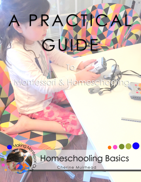 Homeschooling Basics ~ A Practical Guide to Montessori & Homeschooling *PDF BOOK*
