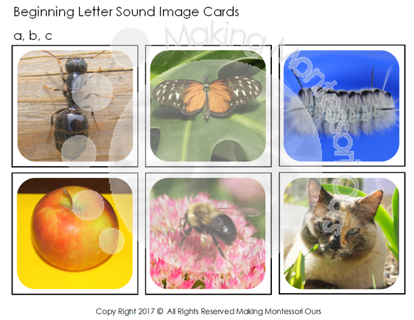 Montessori Alphabet Image Sound Cards