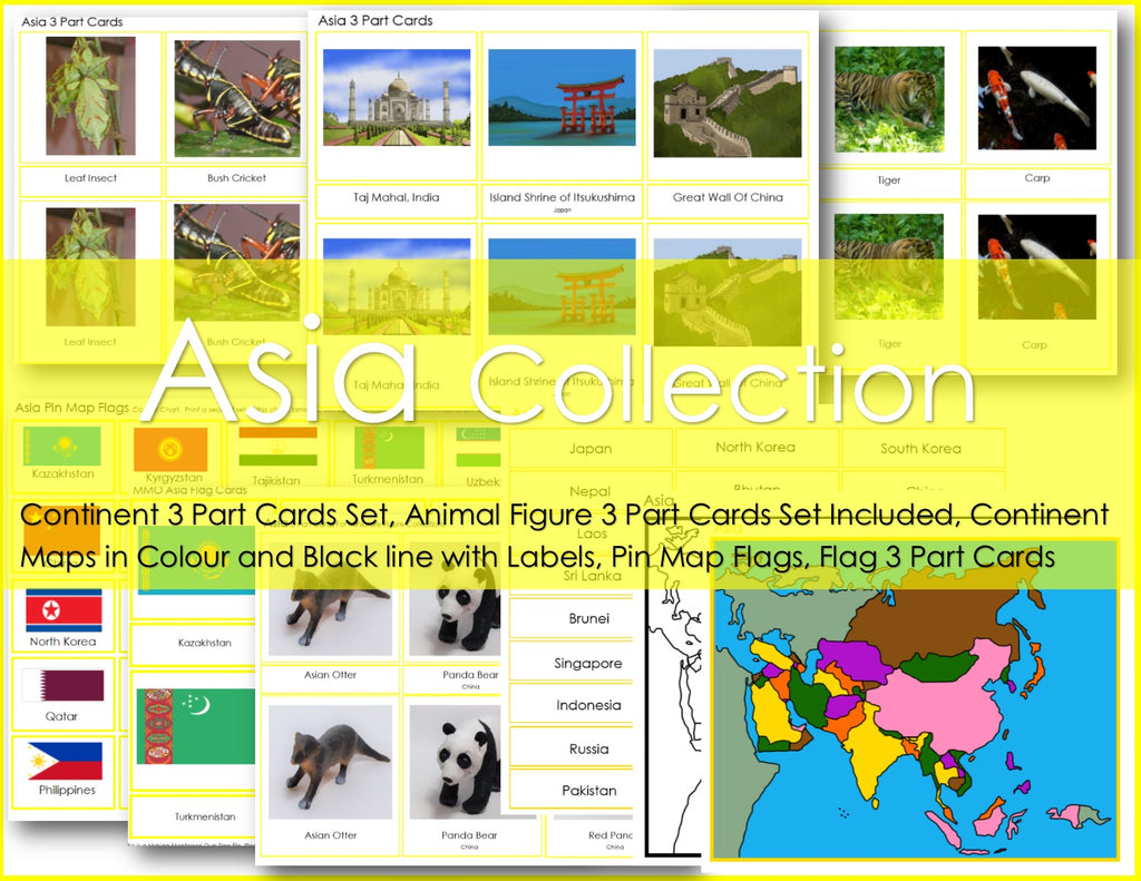Montessori ASIA Continent Package