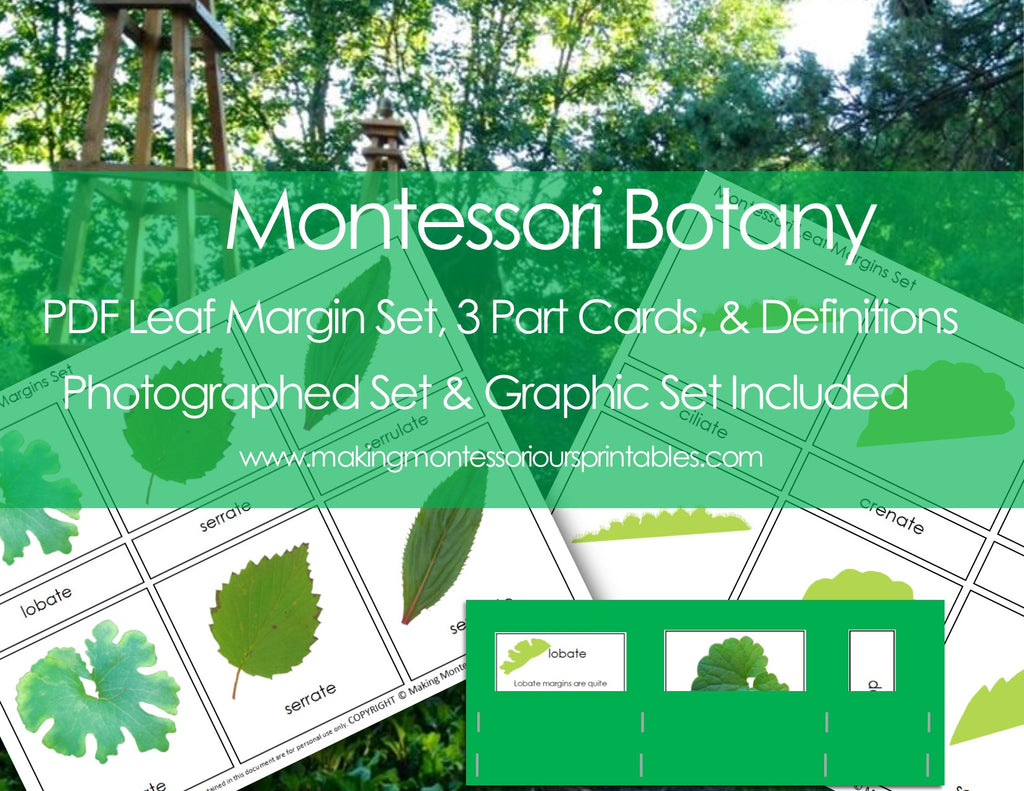 Montessori PDF Leaf Margin Set, 3 Part Cards, & Definitions, Photographed Set & Graphic Set Included