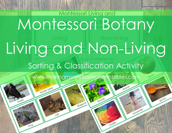 MMO Montessori Botany Living and Non-living Classification and Sorting Activity