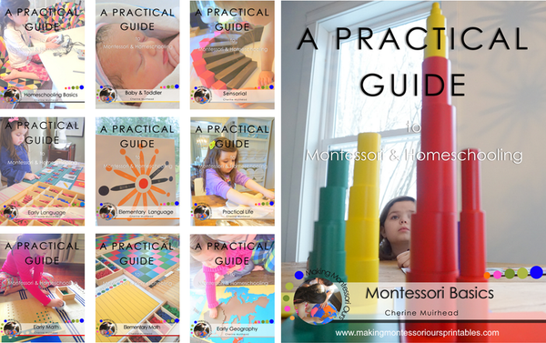 Montessori Basics ~ A Practical Guide to Montessori & Homeschooling *PDF BOOK*