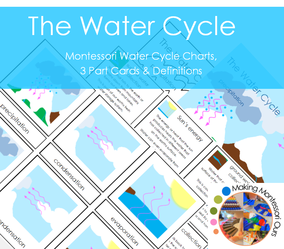 The Water Cycle Charts, 3 Part Cards and Definitions