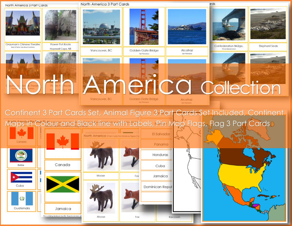 Montessori NORTH AMERICA Continent Collection