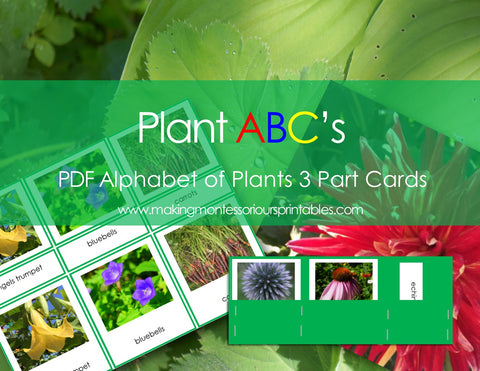 Plant ABC's, Alphabet of Plants 3 Part Cards /Montessori PDF