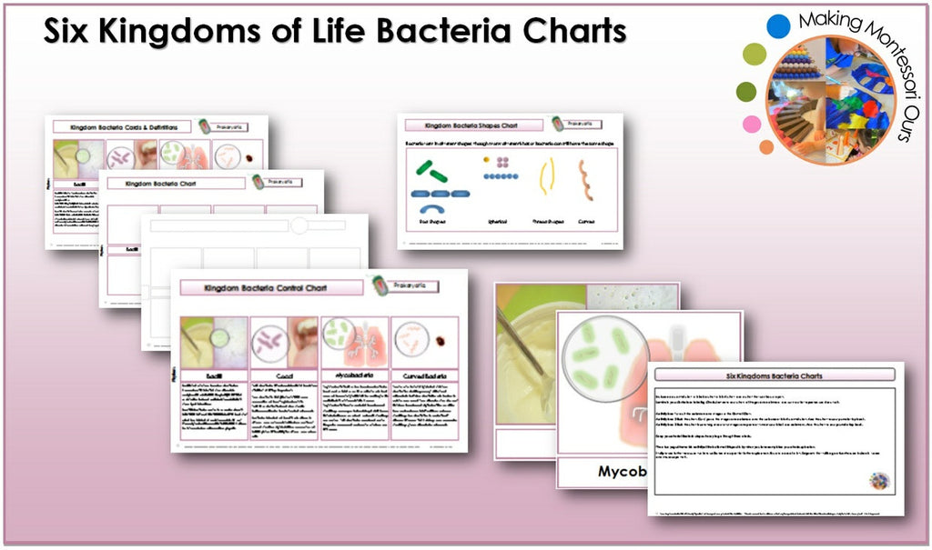 Six Kingdoms Bacteria Chart & Labels Printable Package