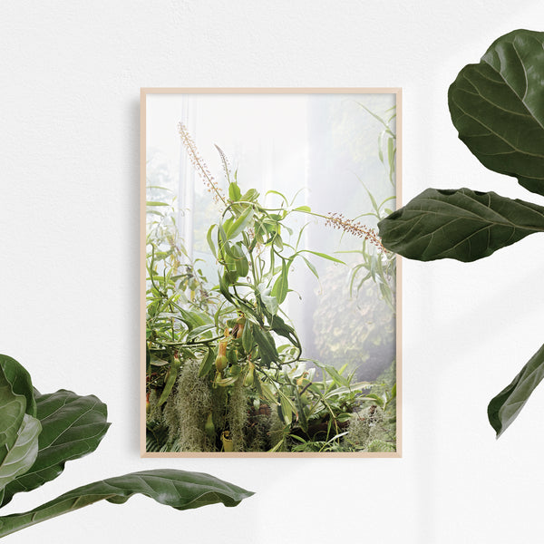 A3 botanical prints