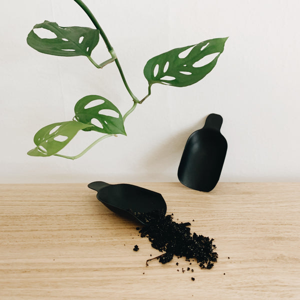 Black soil scoop