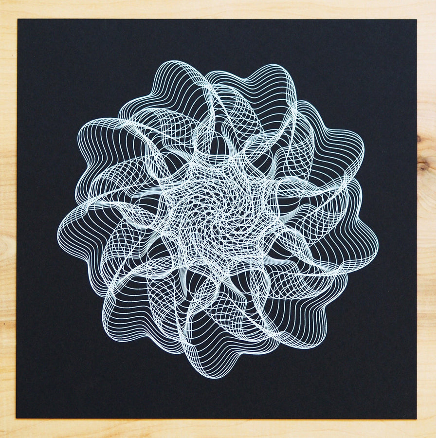Sea Anemone Print - Limited Edition of 6