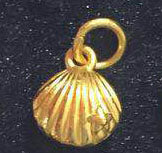 Gold sea shell charm pendant