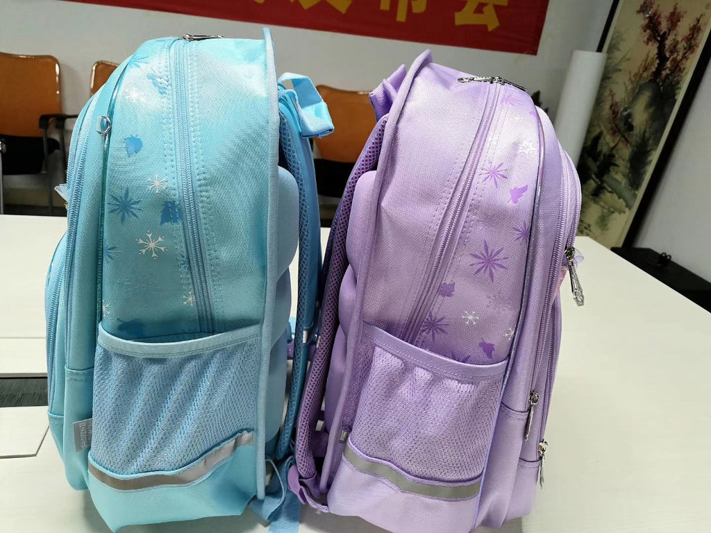 Frozen II Elsa blue pink theme school student bag