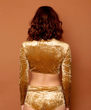 Gold Metallic Velvet Crop Mock Turtleneck