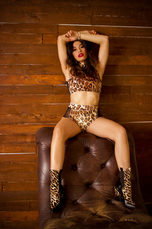 Plush Velvet Highwaist Pin-Up Bottoms in Leopard with Mesh
