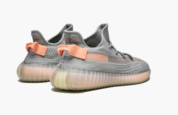 Adidas Yeezy Boost 350 Low True Form V2 Men's