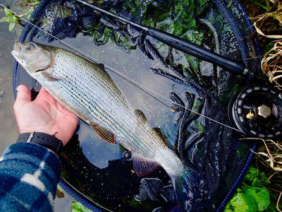 My leader / fly line / fly setups? Floating? Sinking? Micro Thin? Clear? By David Southall