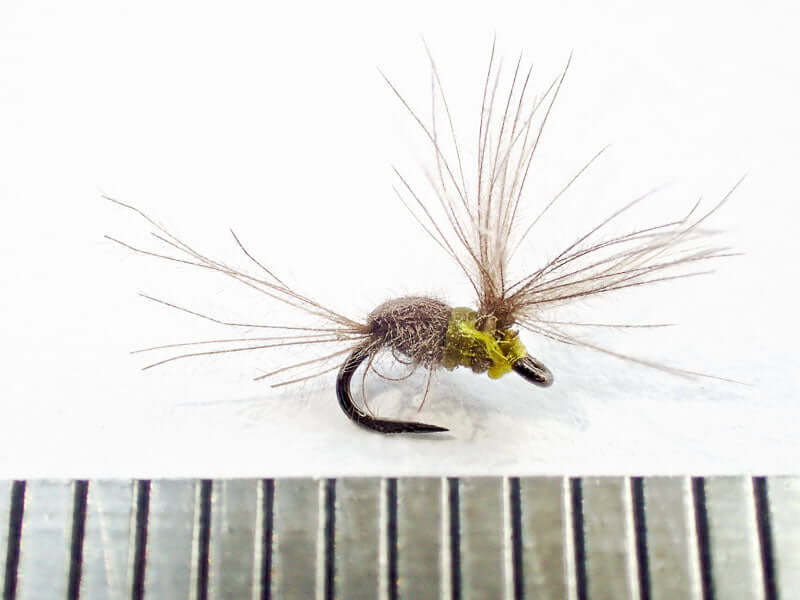 Size 30 IOBO Humpy against a mm scale, the size of a real aphid! (Gamakatsu C12-BM hook)