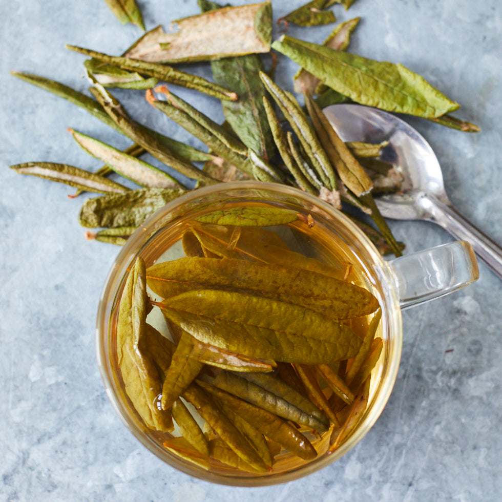 Épices de Cru Labrador Tea - Vinegar Shed