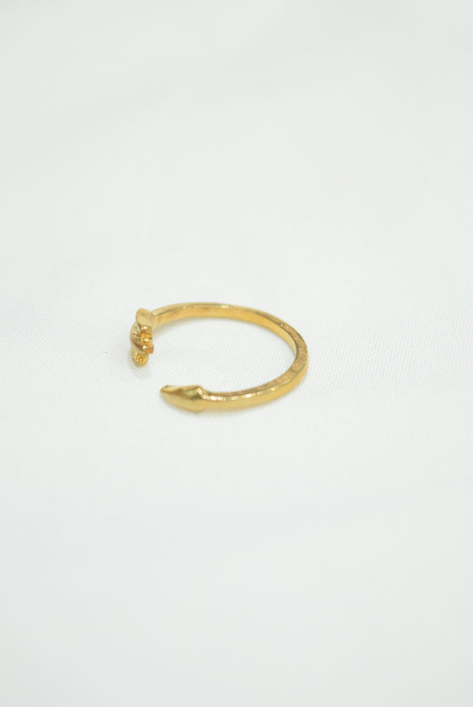 Razlee Chasing Arrows Ring
