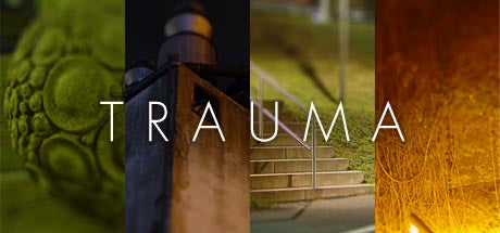 Trauma Presentation Event Coming Up!