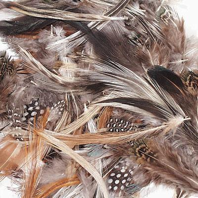 Assorted Natural Feathers - louisekool
