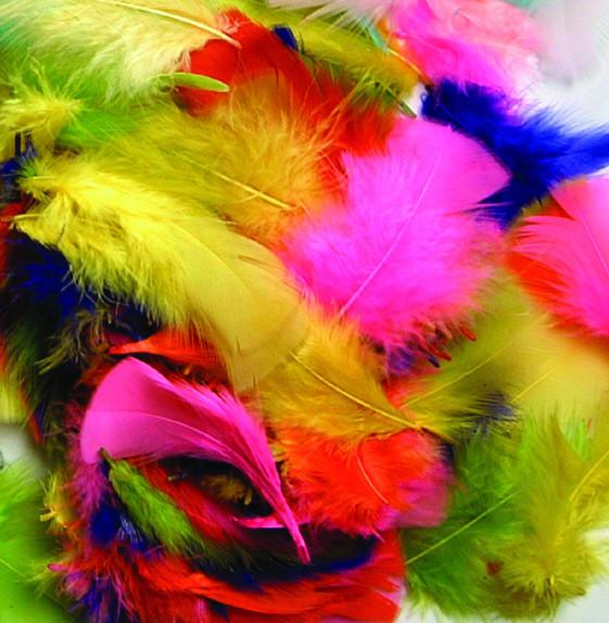Rainbow Coloured Feathers - louisekool
