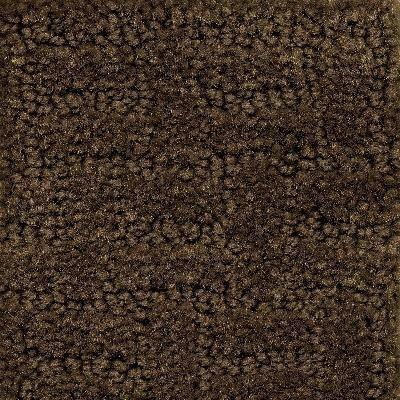 Soft-Touch Texture Block Carpet 4' x 6' - louisekool