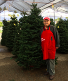 MEDIUM CHRISTMAS TREES (6-7')