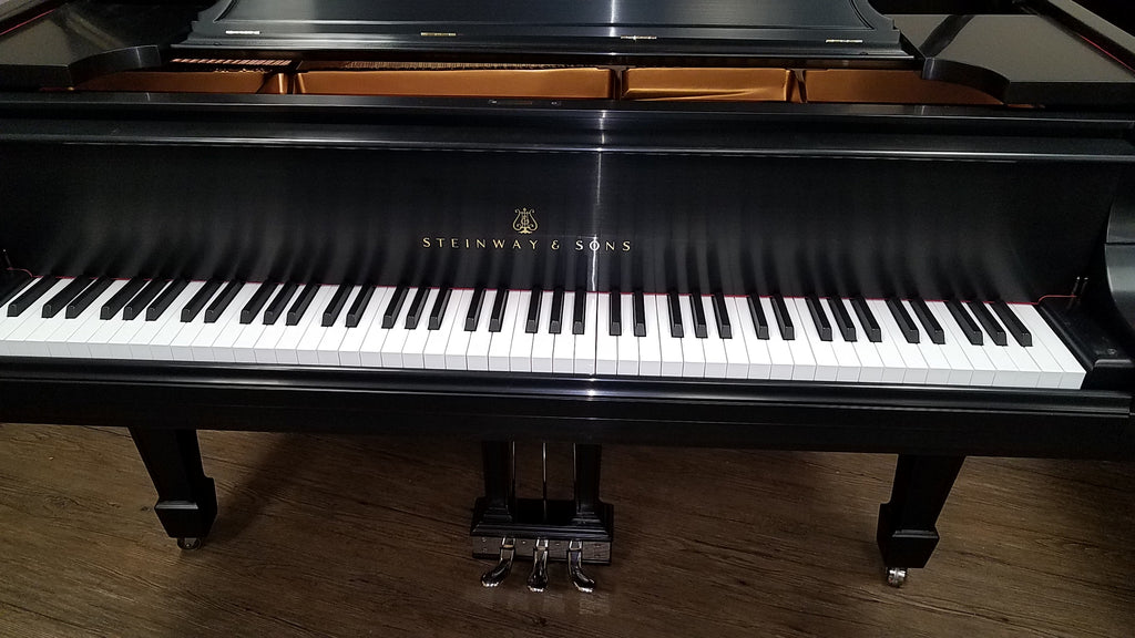 "Steinway Model A3 Grand Piano (6'4½"") - [1916] Restored"