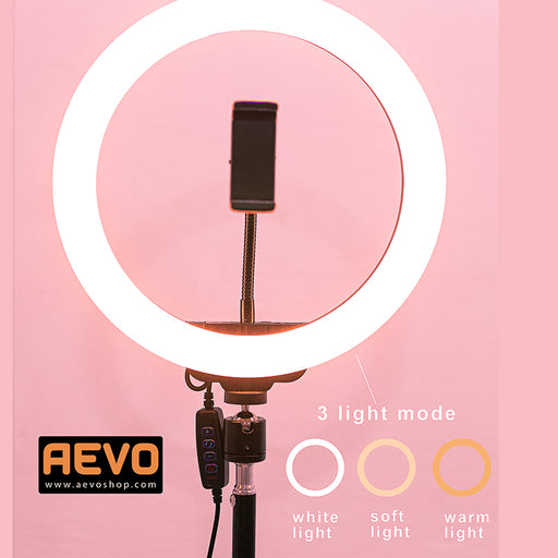 Golive Ring Light 26cm ( come with phone holder )