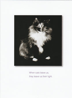 When Cats Leave Us Cat Condolence Card