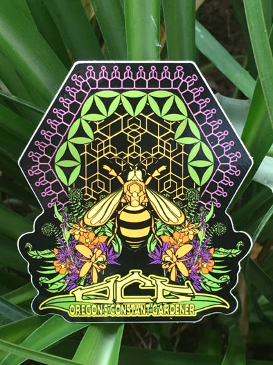 OCG Honey Bee Sticker