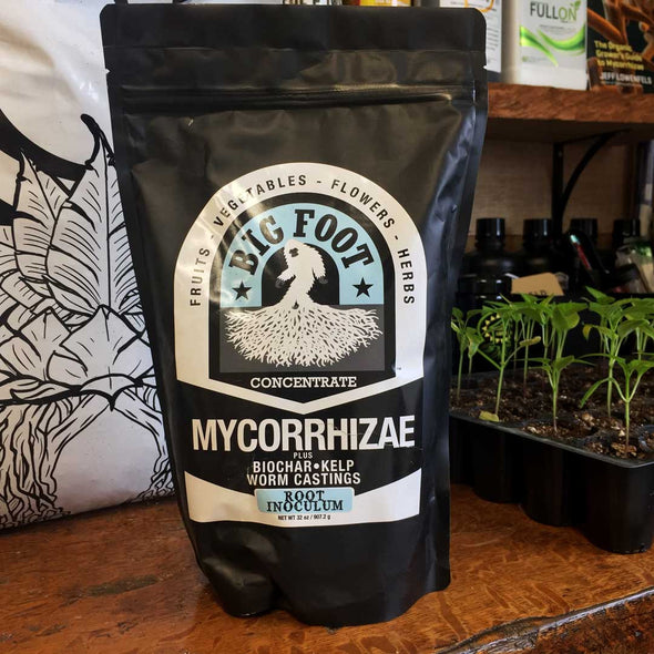 Big Foot Mycorrhizae
