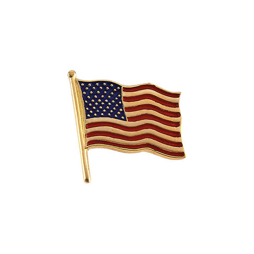 14K Yellow 14.5x14mm American Flag Lapel Pin-Pins-Needjewelry.com