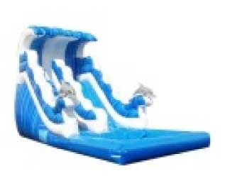 DOLPHIN RIDE WAVE SLIDE # 2
