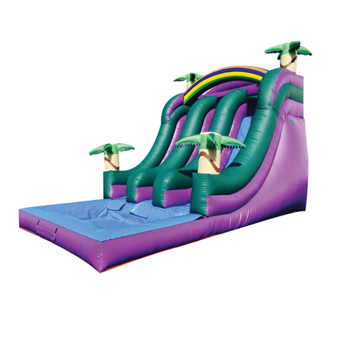 DOLPHIN THEME  FRONT LOAD DUAL LANE  WATER SLIDE
