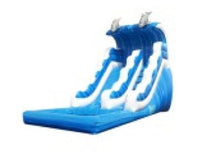 FRONT LOAD  DOLPHIN JUMP WAVE SLIDE # 2