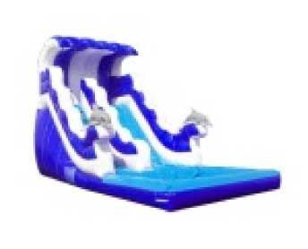 DOLPHIN RIDE WAVE SLIDE # 1