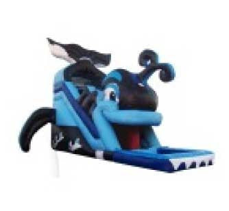WHALE TAIL SLIDE WATER SLIDE