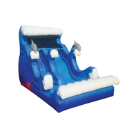 BLUE/WHITE DOLPHIN THEME  FRONT LOAD  SLIDE